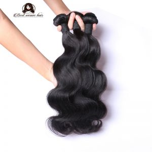 Body-Wave-bundle